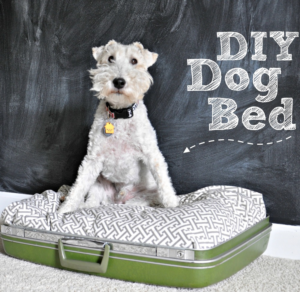 DIY Suitcase Dog Bed {repurpose}.jpg