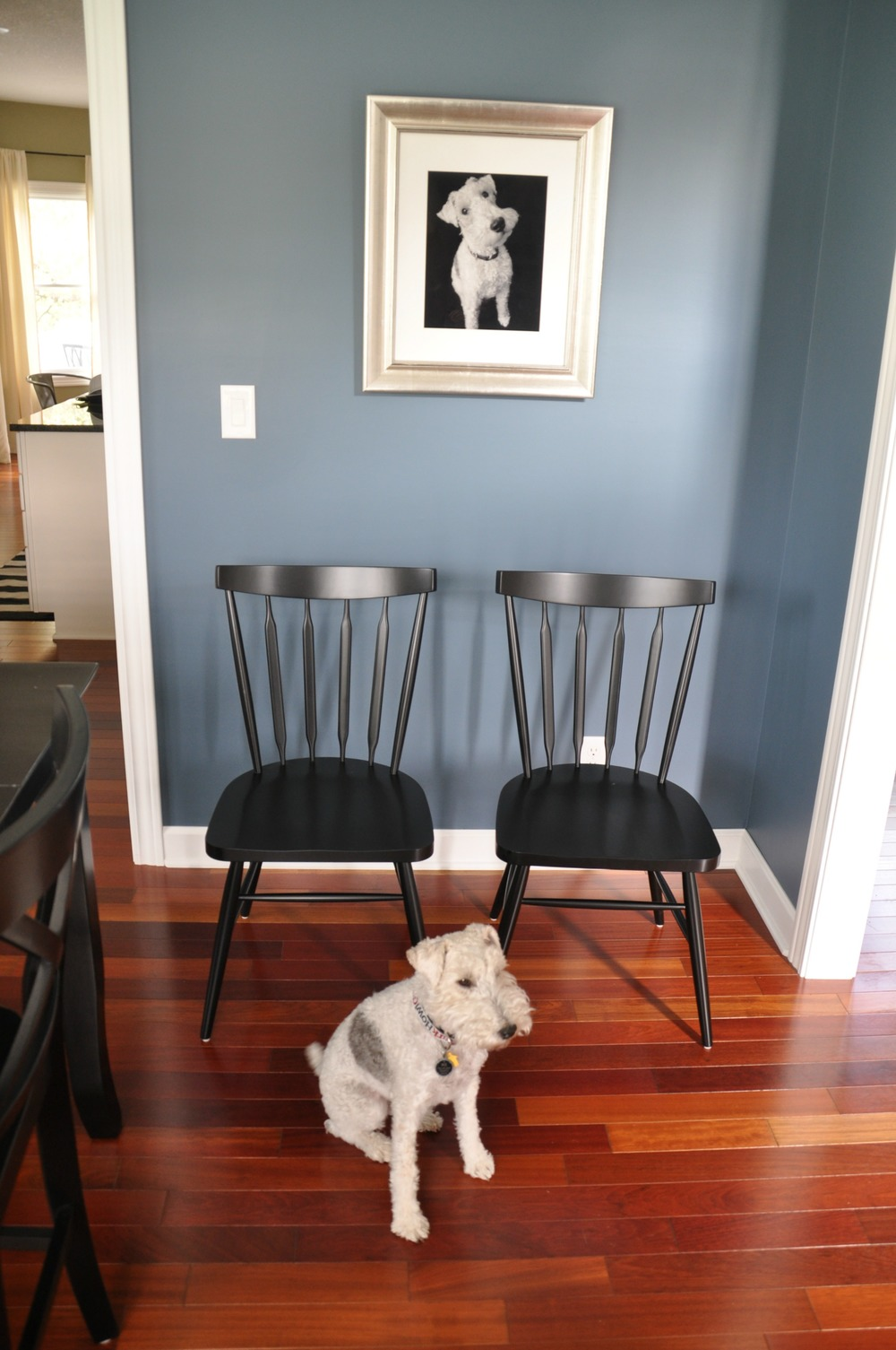 Crate and Barrel Willa jpg. Dining Room Chairs   Decor and the Dog