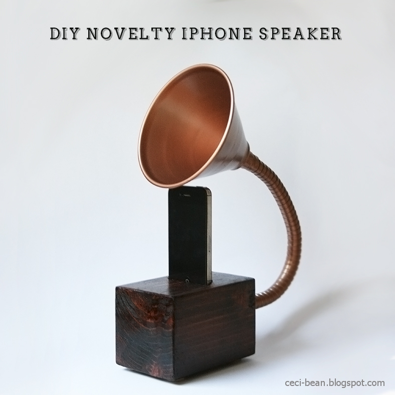 DIY Novelty iphone speaker from CeciBean