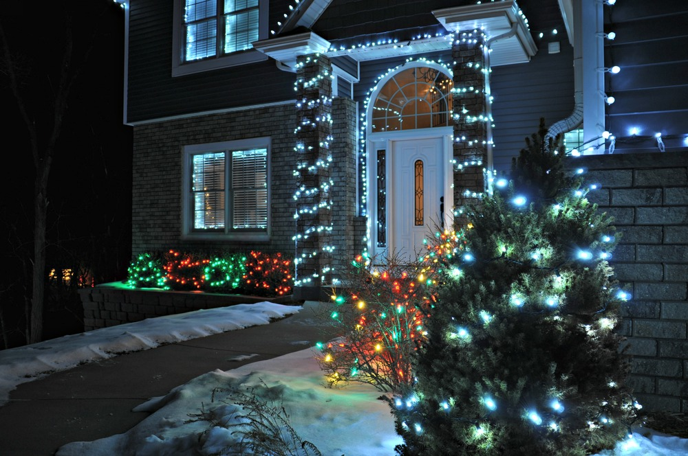 Outdoor Lights {decor and the dog}