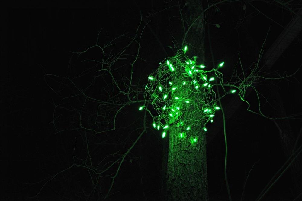 Outdoor Lighted Christmas balls {decor and the dog}
