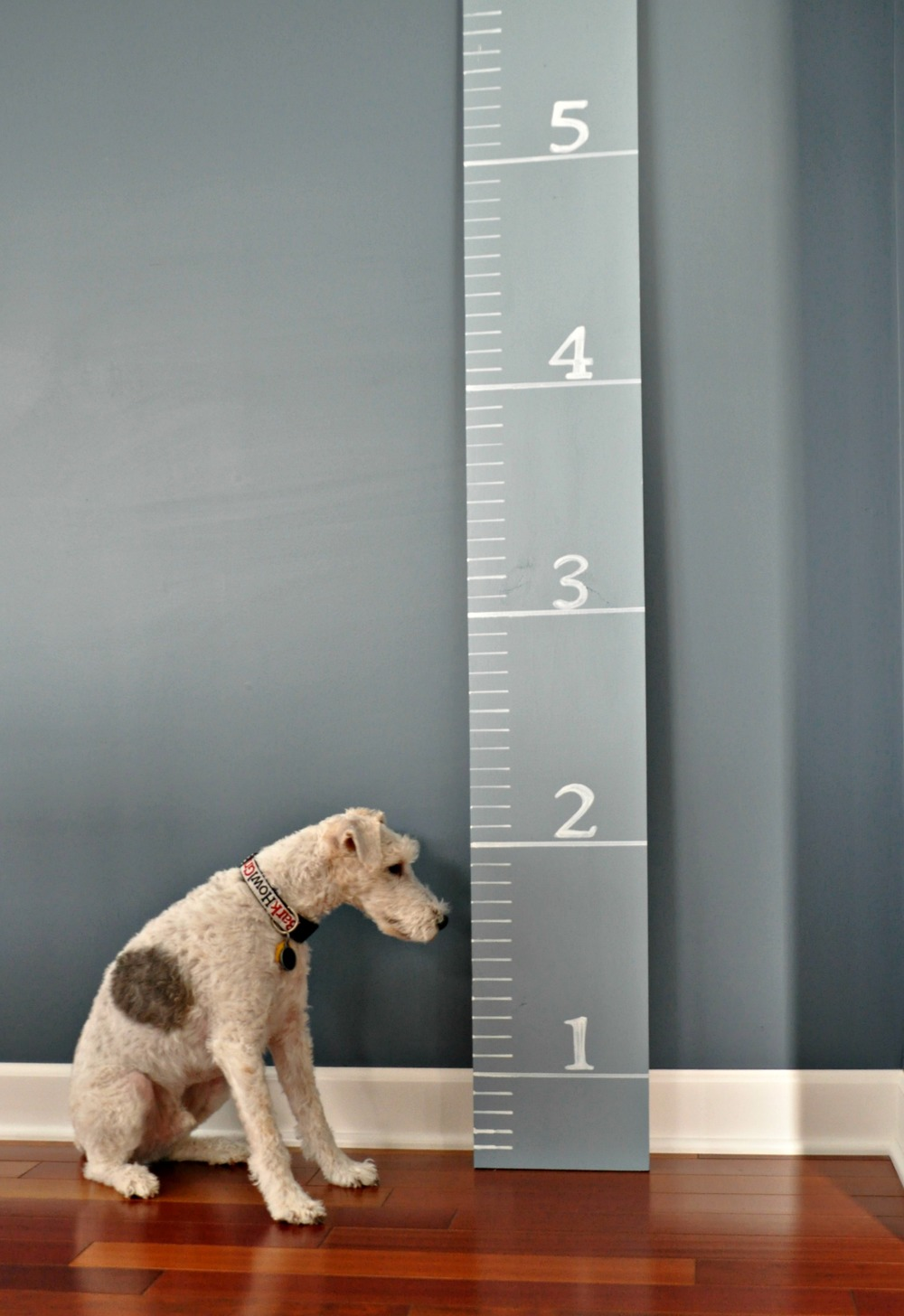 DIY Growth Chart Tutorial {Decor and the Dog}