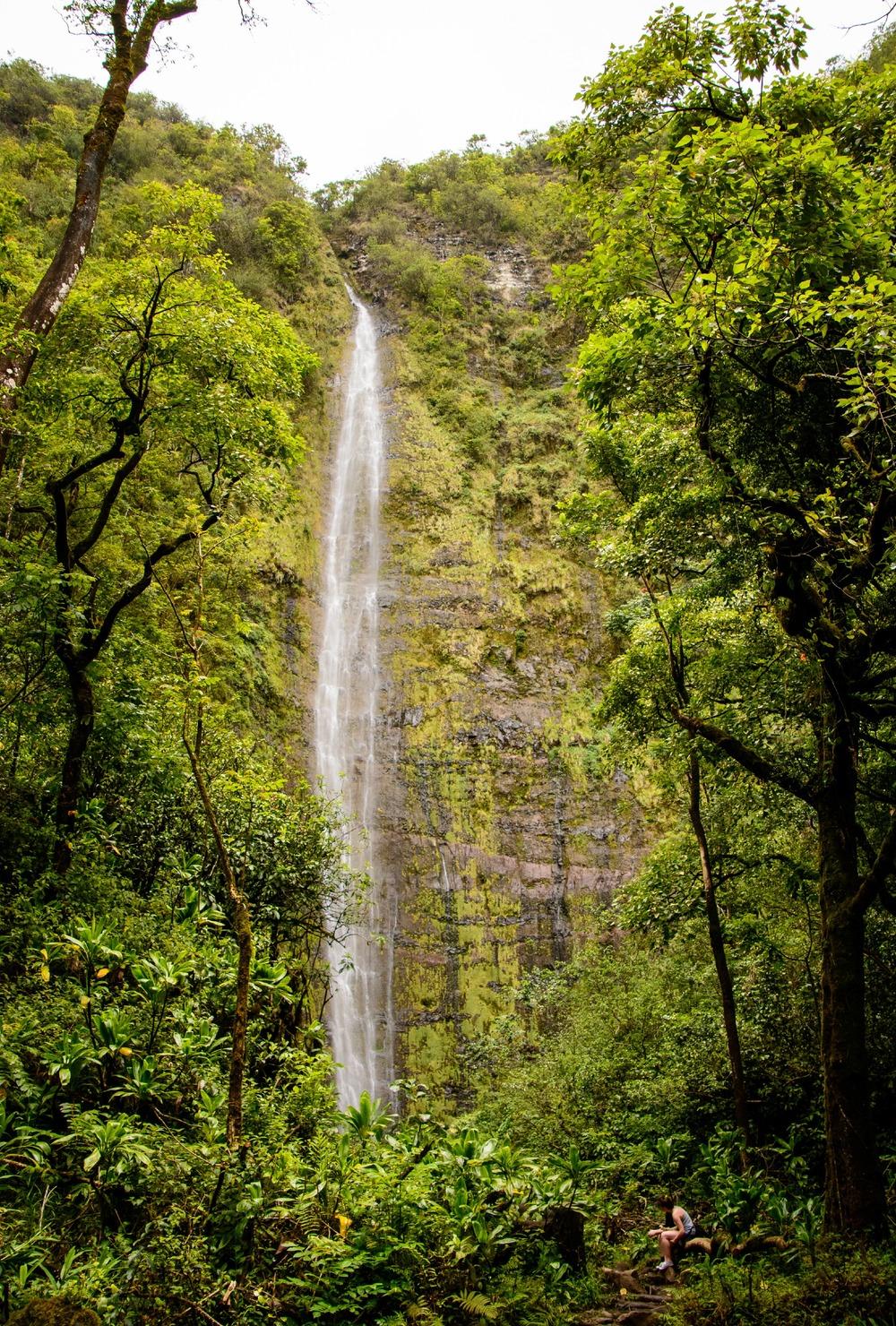 Road to Hana- Waimoku Falls