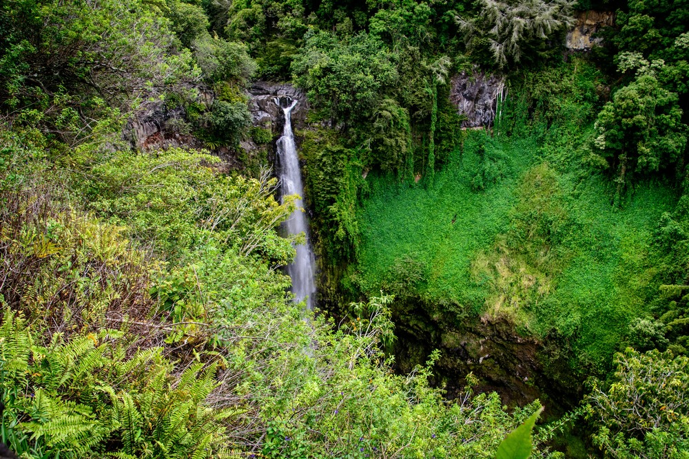 Road to Hana- Pipiwai Trail
