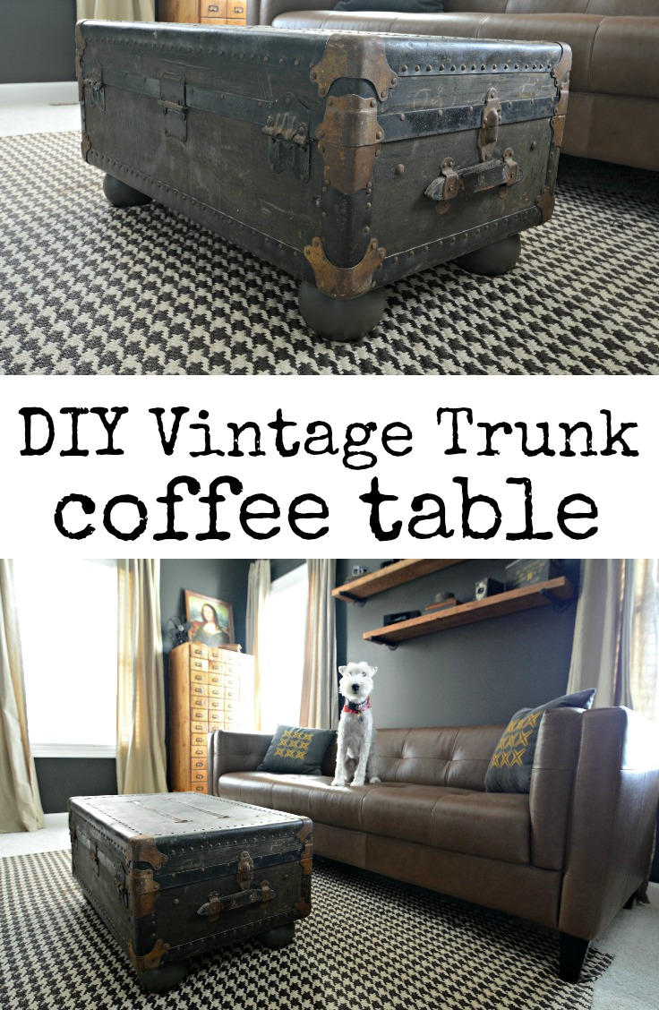 Vintage trunk turned coffee table decor and the dog Old trunks as coffee tables