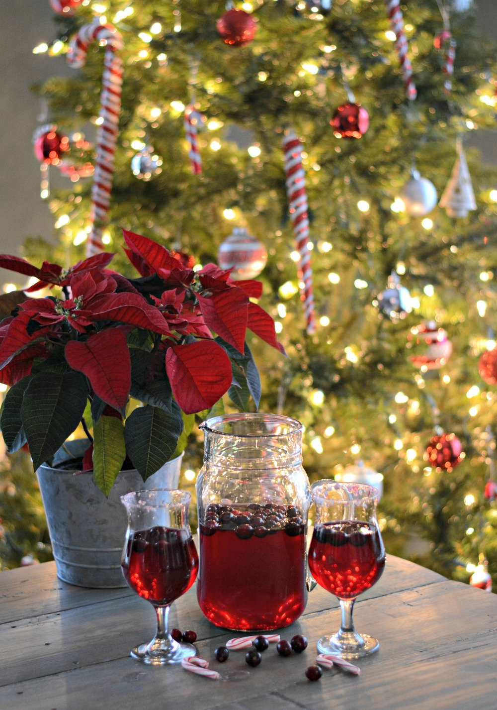 Poinsettia Punch — Decor and the Dog