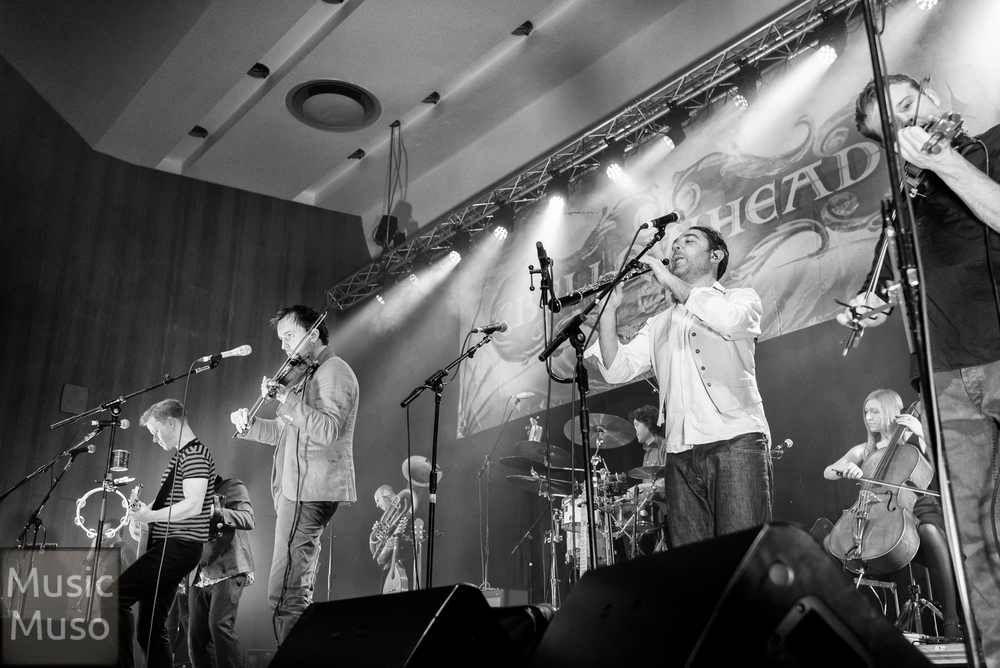 Bellowhead BW #5.jpg