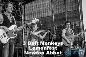 3 daft monkeys.jpg