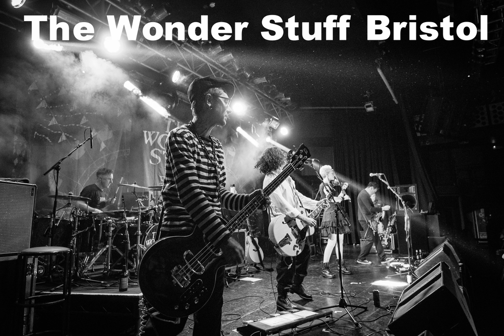 20160317-The Wonder Stuff-7736-50.jpg