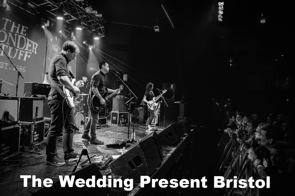20160317-The Wedding Present-7603-30bw.jpg