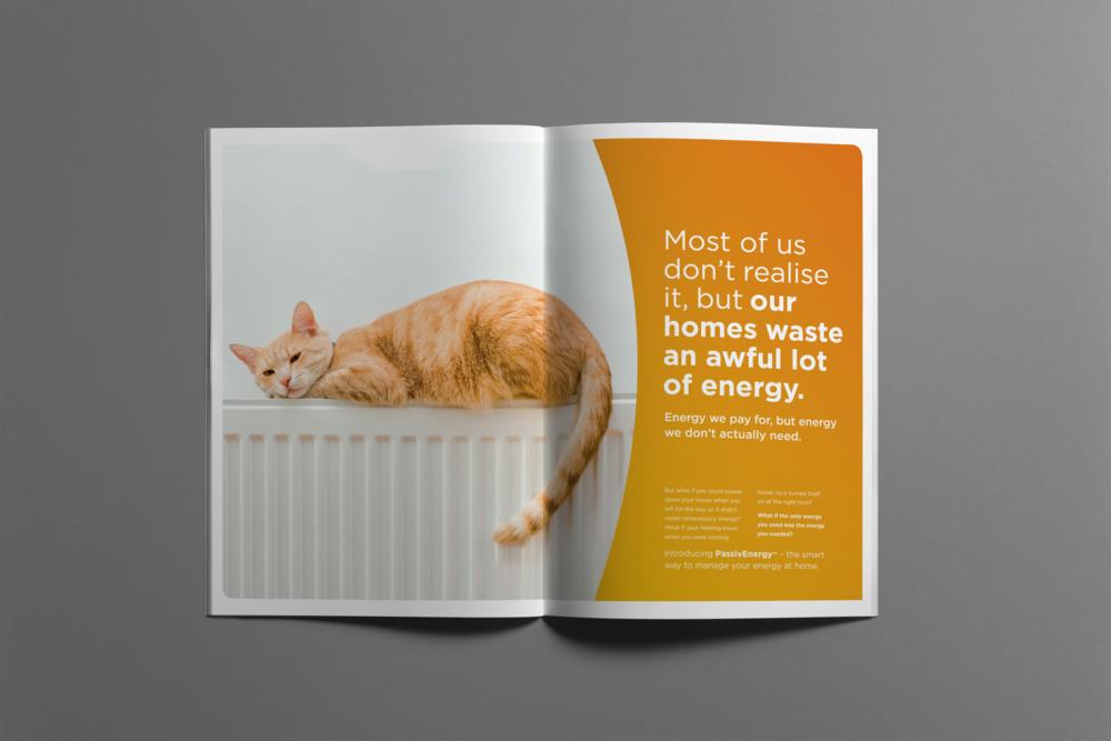 04-brochure-a4-vert cat2.png