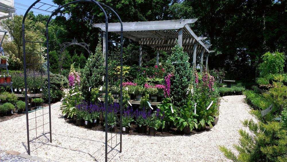 Garden Center 1.jpg