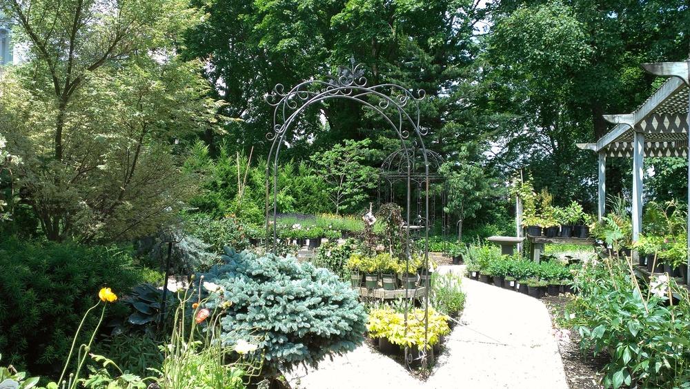 Garden Center 4.jpg