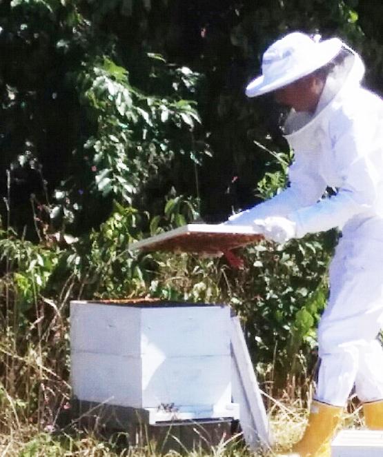 lisa_beekeeper10.jpg