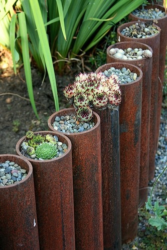 garden-edging-industrial-pipe.jpg