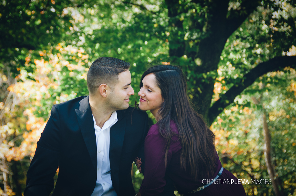 boston engagement photographer-larz anderson park.jpg