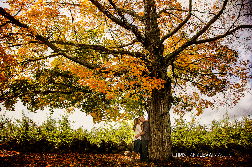 boston engagement photography orchard-4.jpg