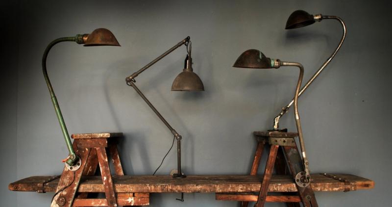 lampsgooseladder.jpg