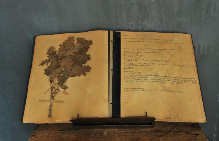 plantbook1.jpg