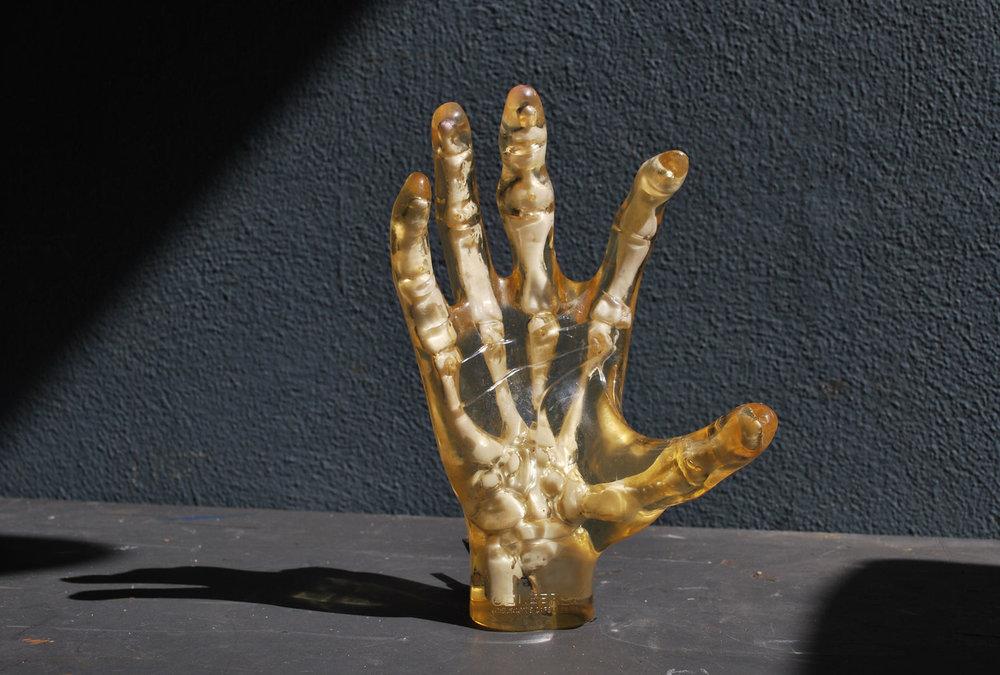 bone_hand_agentgallery.jpg