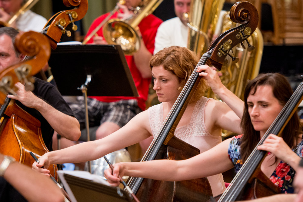 Cellist | Brno Philharmonic Orchestra