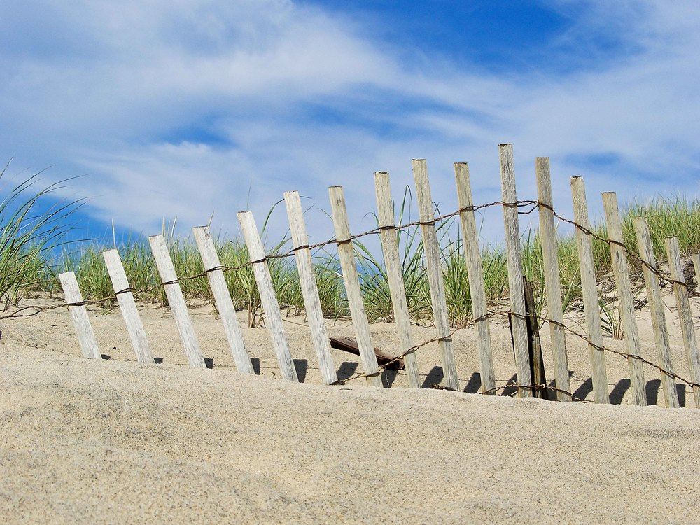Katama Beach Dunes, Edgartown, MA