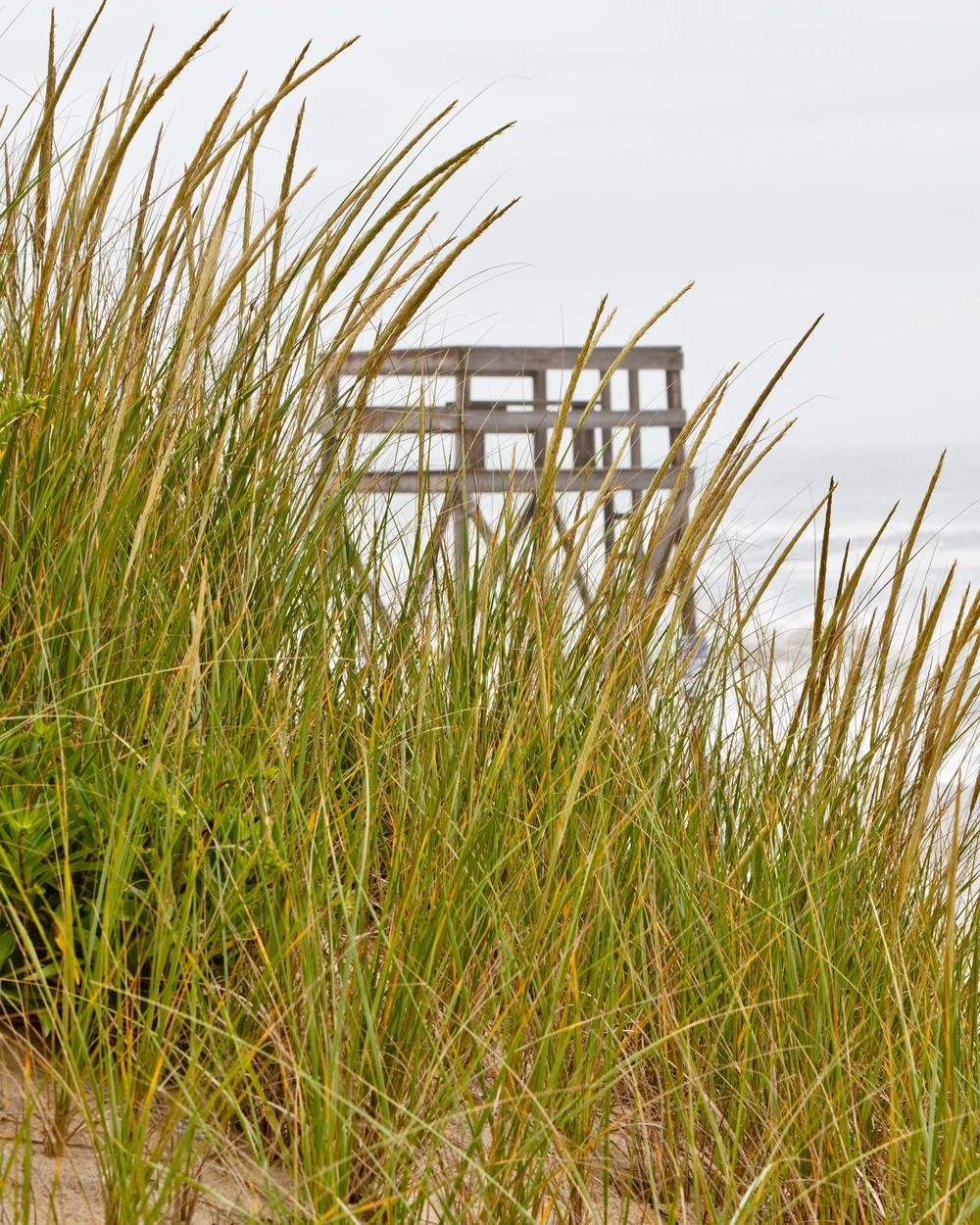 Lifeguard Stand, Katama Beach, Edgartown, MA
