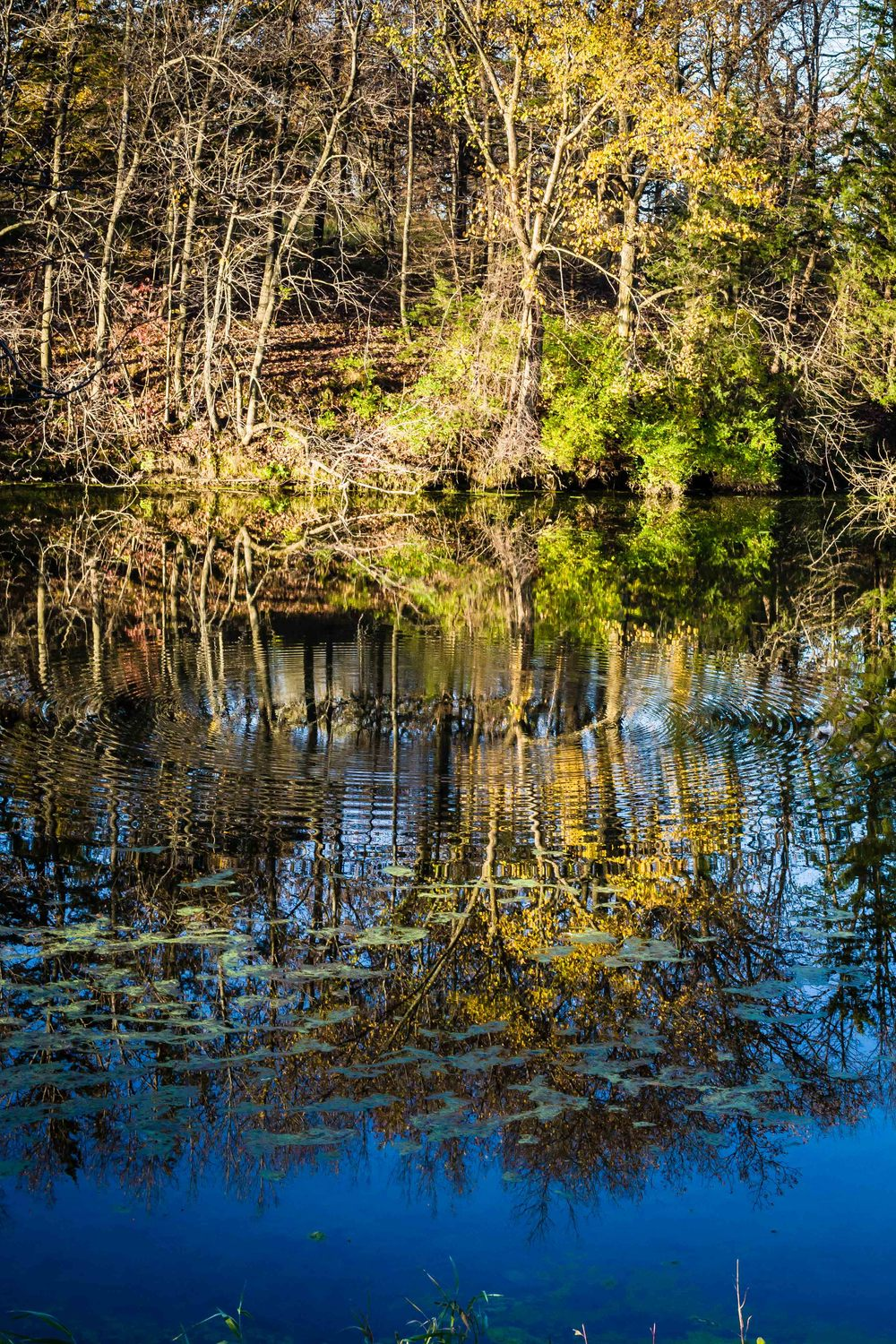 Reflections, McFarland Park, Story County, Iowa
