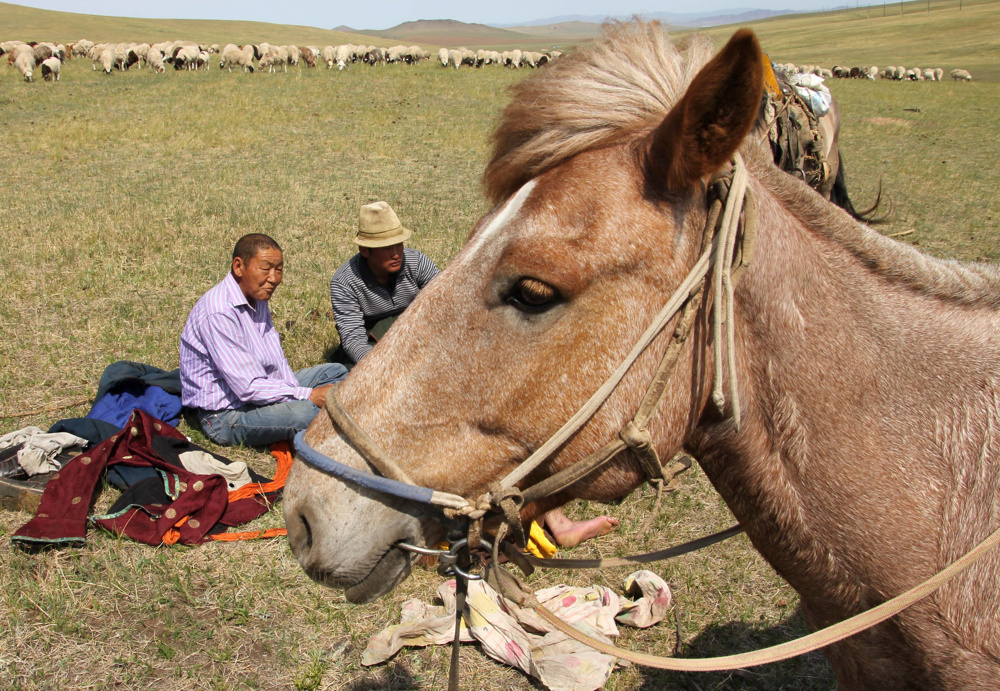 Lunch time, Mongolia