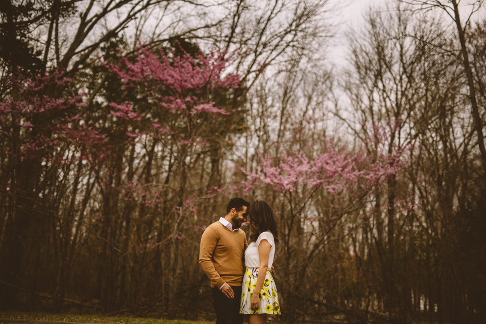 Engagement_Photographers_nashville_TN-2.jpg