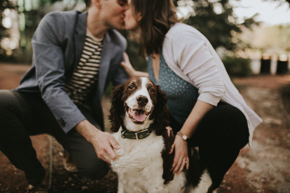 dogs-at-engagement-sessions--1-3.jpg