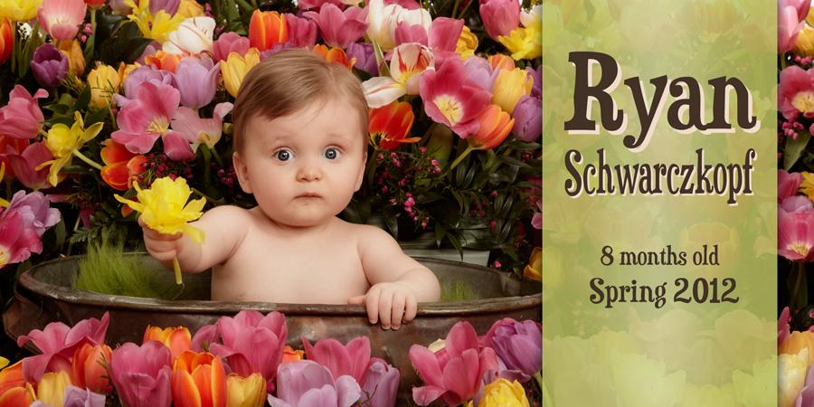 professional-garden-baby-photographer-saskatoon-cindy-moleski-26825Schwarczkopf card (12) 4x8 cards.jpg