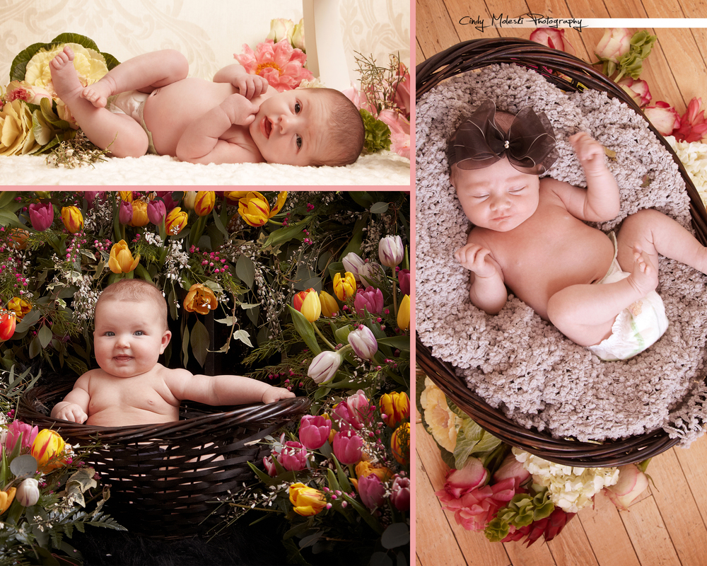 Garden Baby Special, cindy, moleski, photography, saskatoon, saskatchewan, flowers, baskets, newborn, garden, floral.jpg