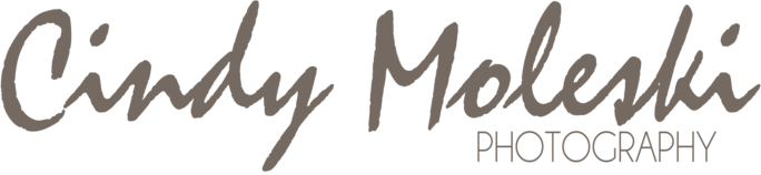 Cindy Moleski Photography - A Saskatoon photographer specializing in portrait, wedding and commercial photography, print