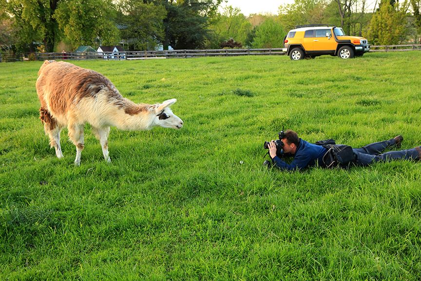 Professional Photographer Steve at Work Frederick MD