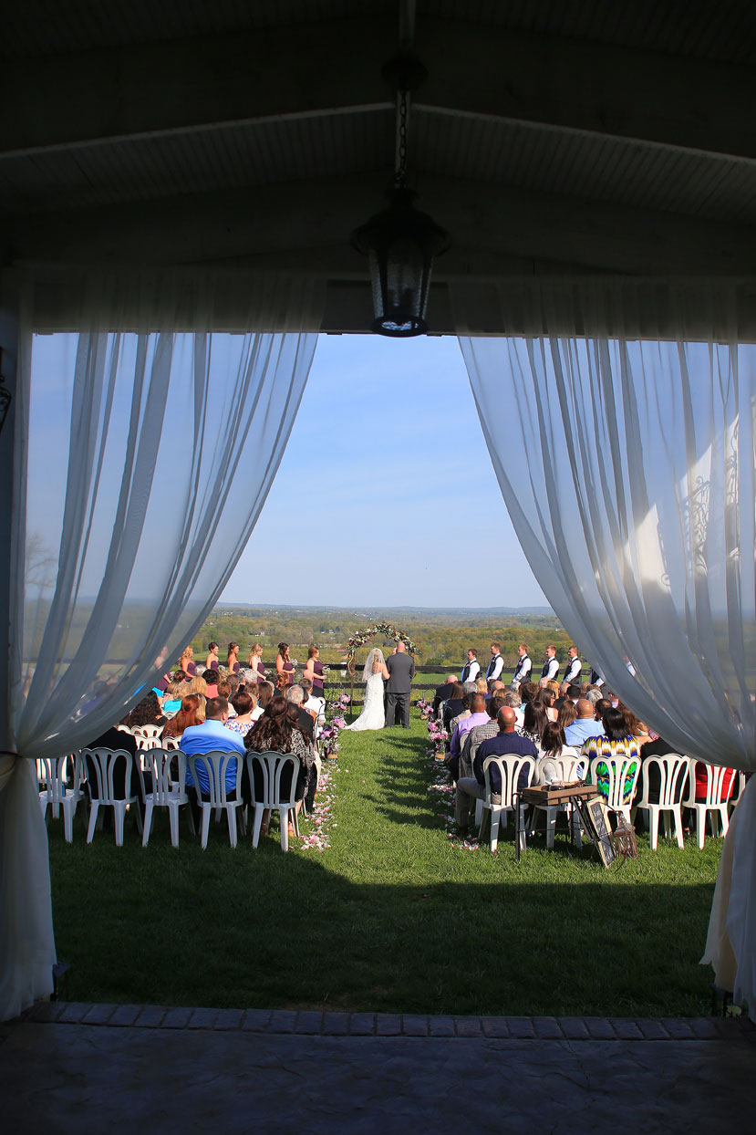 Bluemont Vineyard Wedding Ceremony Photo