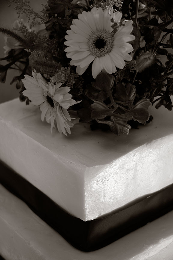 Virginia Farm Wedding Cake Photo Black and White Photo