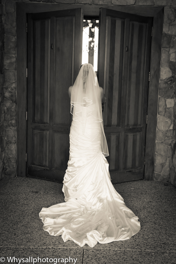 bridal portrait back of wedding dress bull run golf course