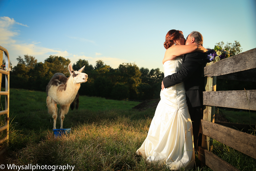 weather Lea Farm Photos | Photographer | Farm Weddings | VA| Loudoun County VA