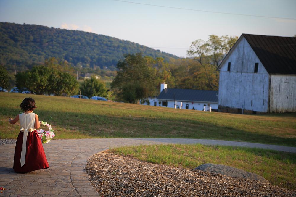 868 Estates Wedding Photos | Photographer | Purcellville VA