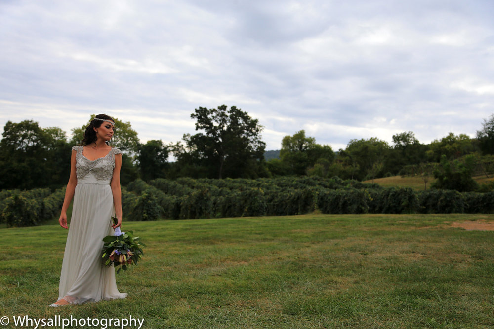 Bluemont Vineyards Wedding