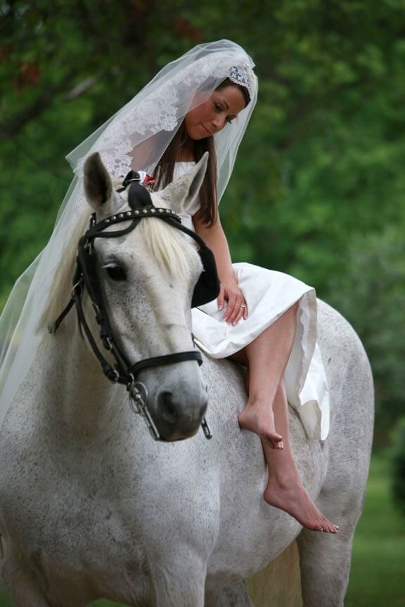 Artistic Wedding Photo Bride on Horse