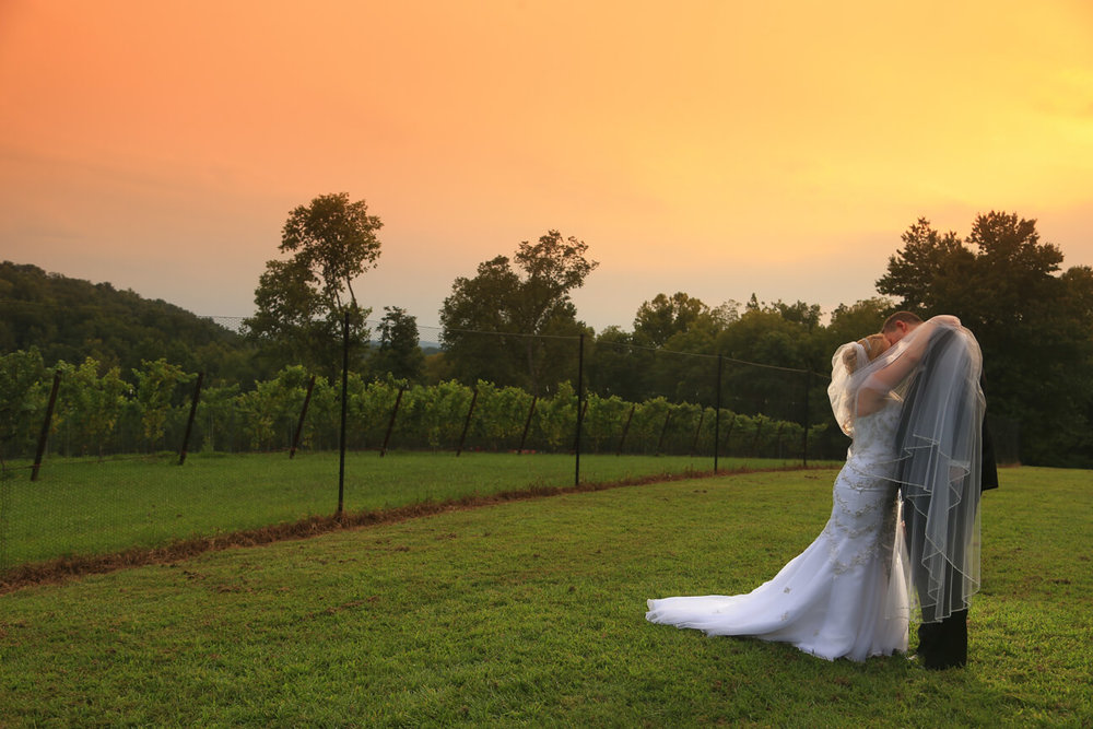 Cana Winery Wedding Photos