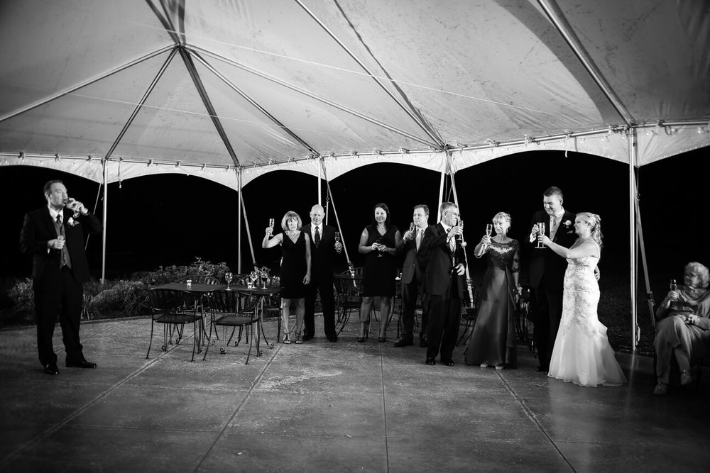 cana-winery-reception-toast.jpg