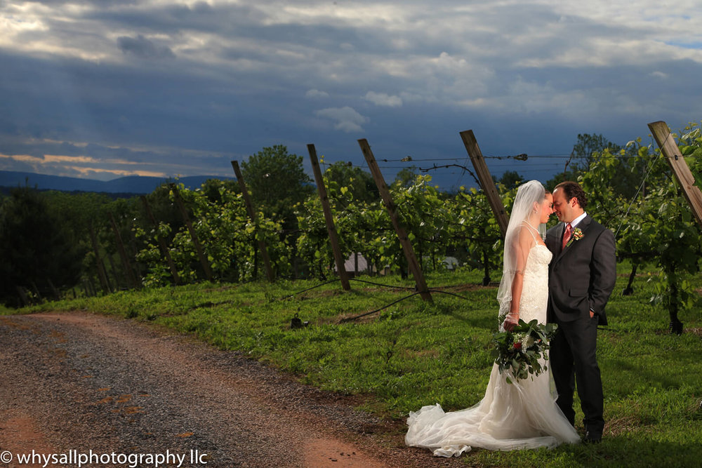 bride-and-groom-in-vineyard-detour-vineyards.jpg