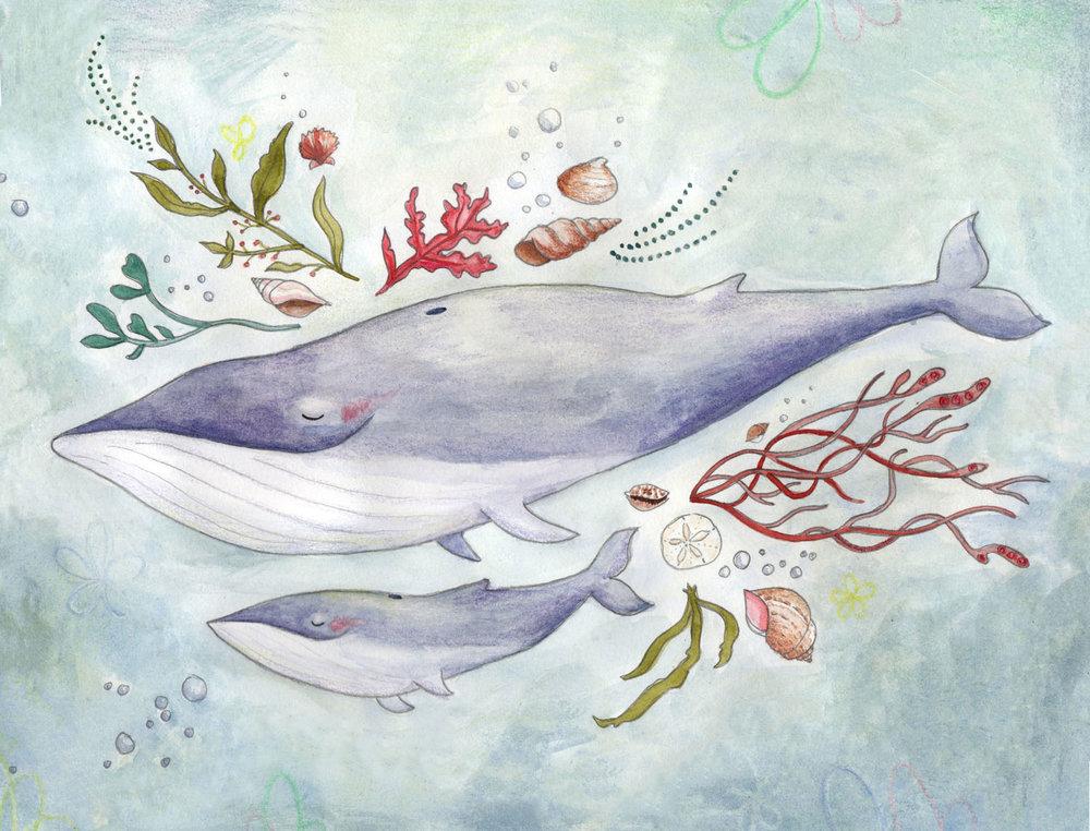 Whale Card.jpg
