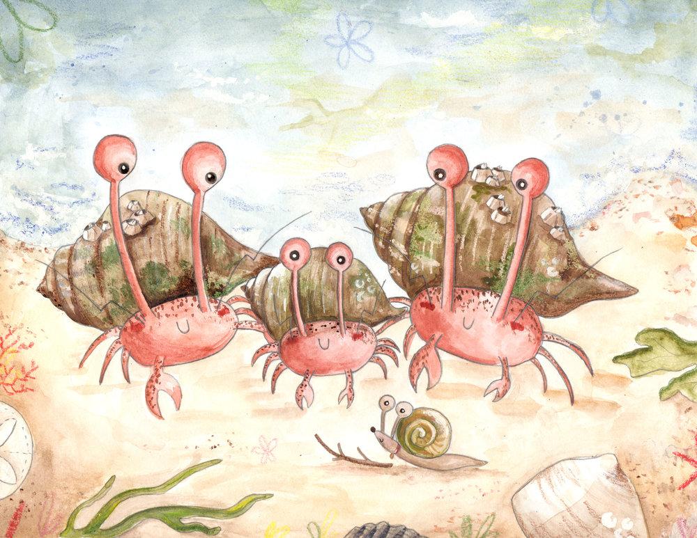 Hermit Crabs.jpg