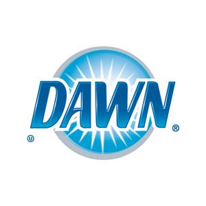 4c_logo_DAWN.jpg
