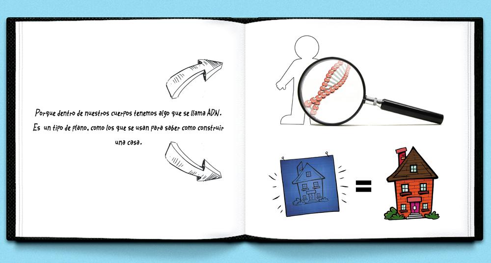 BOOK UD Span 11.jpg