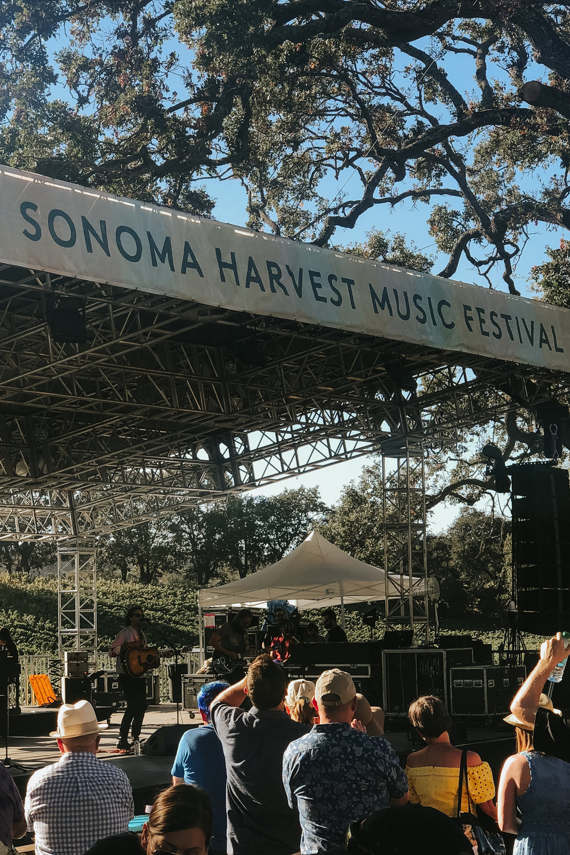 Sonoma Harvest Music Festival via. Birdie Shoots | www.birdieshoots.com